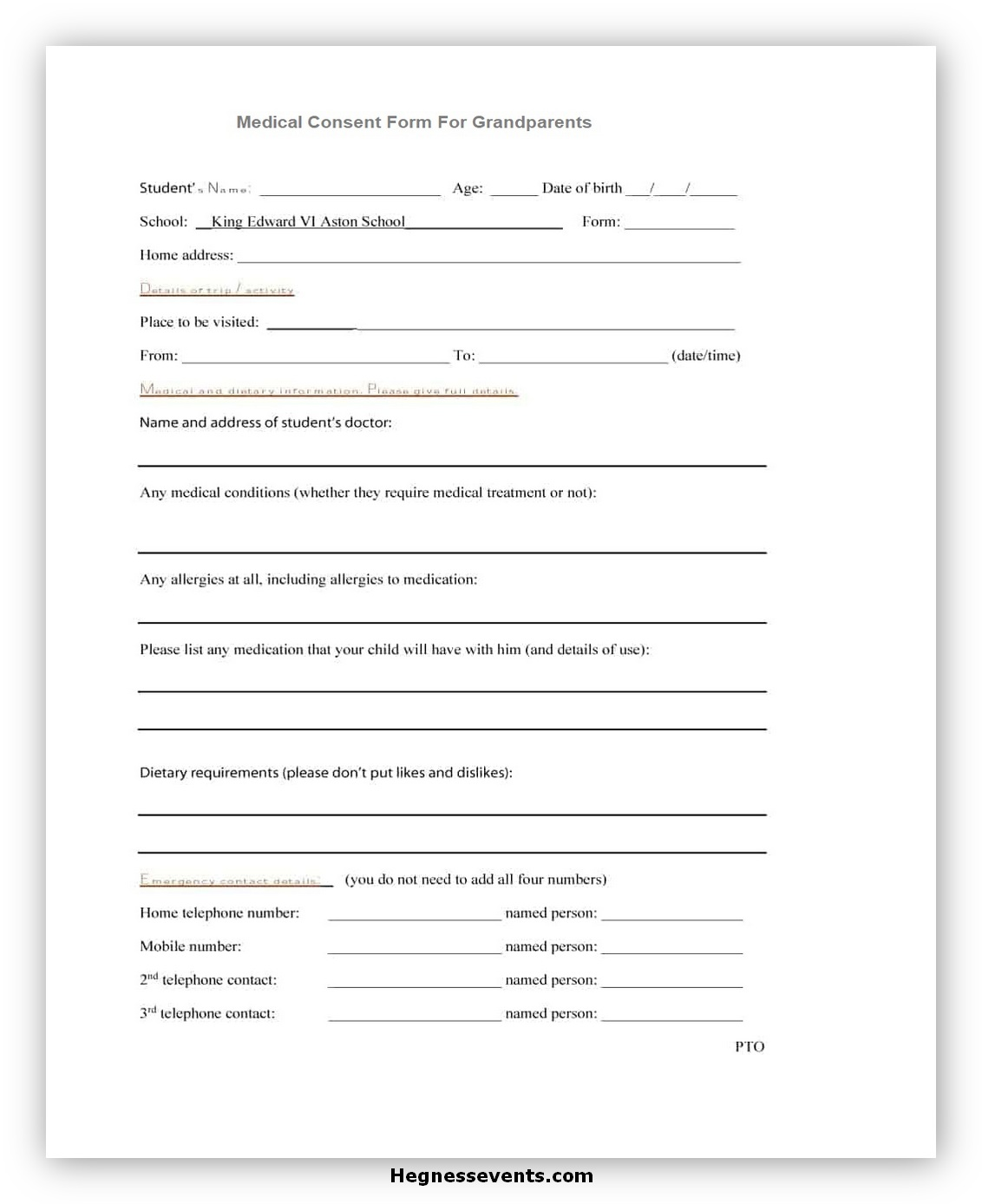 Medical Consent Form for Grandparents 01