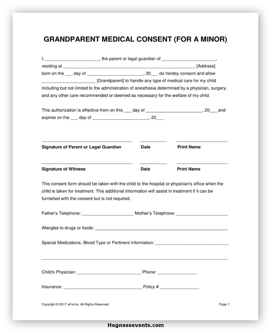 Medical Consent Form for Grandparents 04